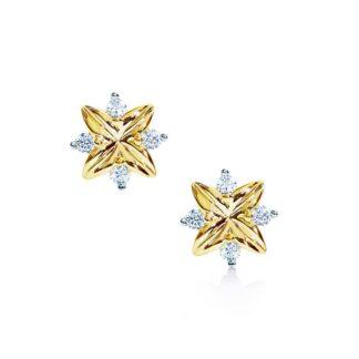Oxford petite stjerne forgyldte øreringe