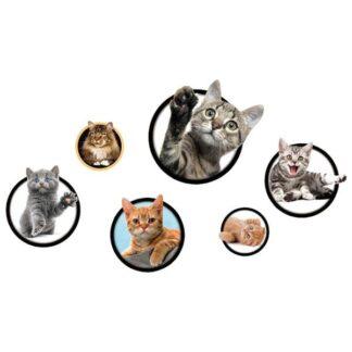 Katte wallsticker. 6 søde kattekillinger.