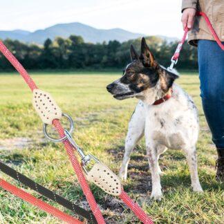 Hundesnor Rund Nylon 1 cm