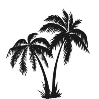 Wallsticker med flotte palmer. 58x62cm.