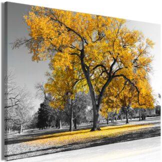 Billede - Autumn in the Park (1 Part) Wide Gold - grå / 120x80