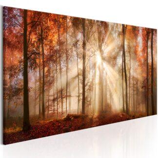 Billede - Autumnal Dawn - brun / 135x45