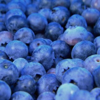 Blue Crop - Blåbærbusk