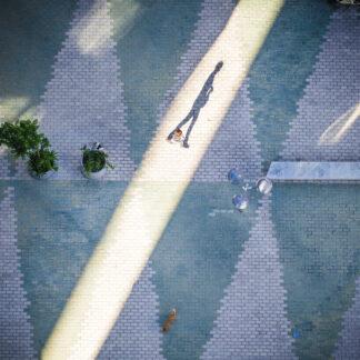 Cast a Long Shadow af Julie Aucoin