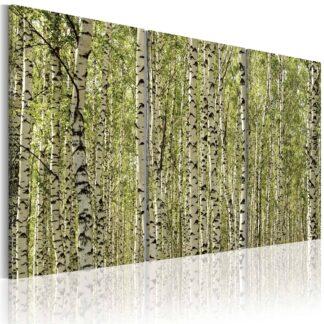 Lærredstryk A forest of birch trees