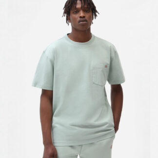Dickies Porterdale T-shirt (Mint, S)